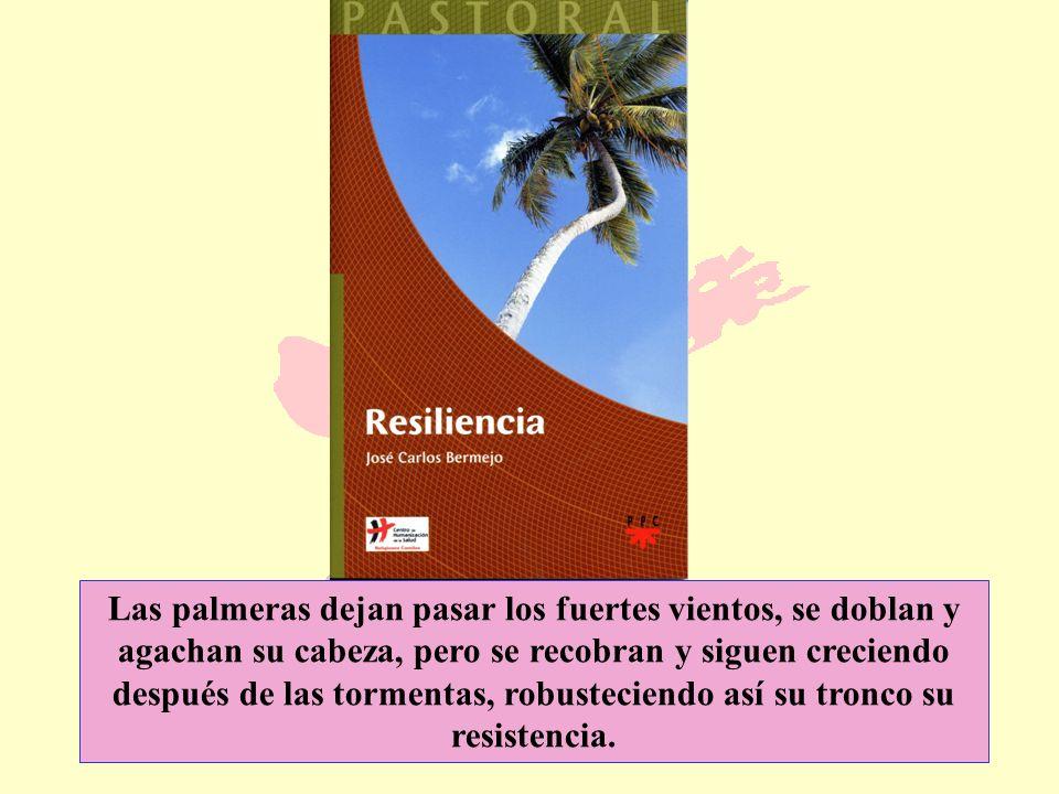Las palmeras dejan pasar los fuertes vientos, se doblan y agachan su cabeza, pero se recobran y siguen creciendo después de las tormentas, robusteciendo así su tronco su resistencia.