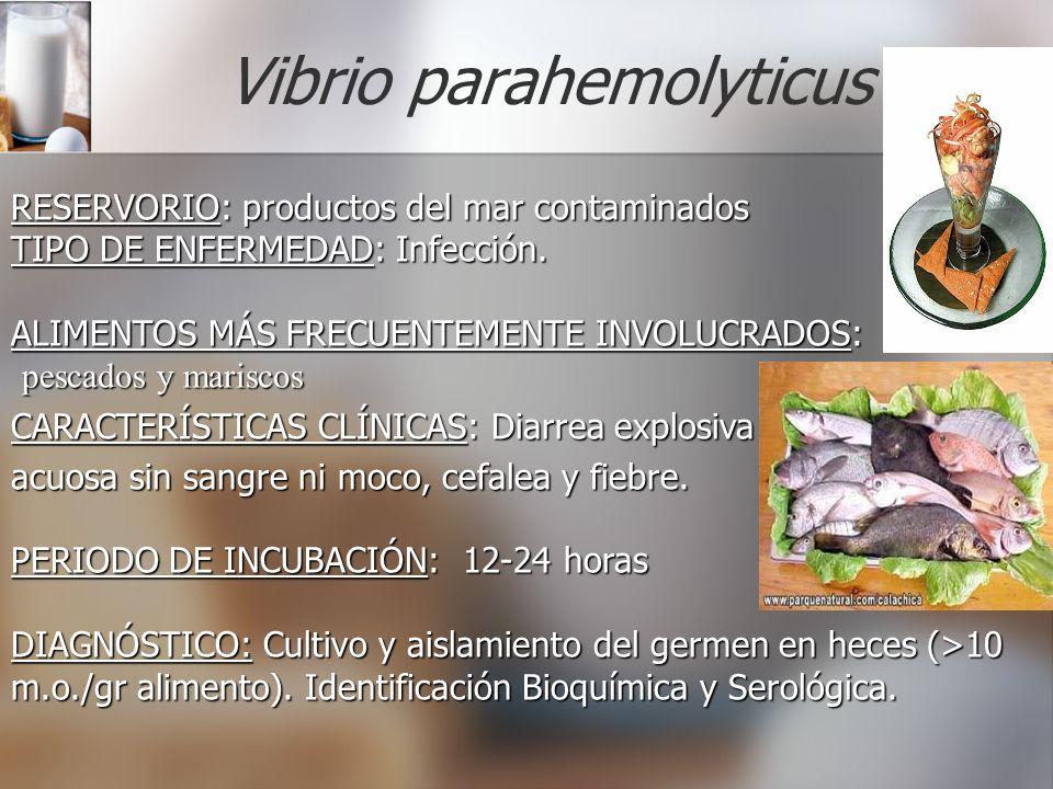 Vibrio parahemolyticus