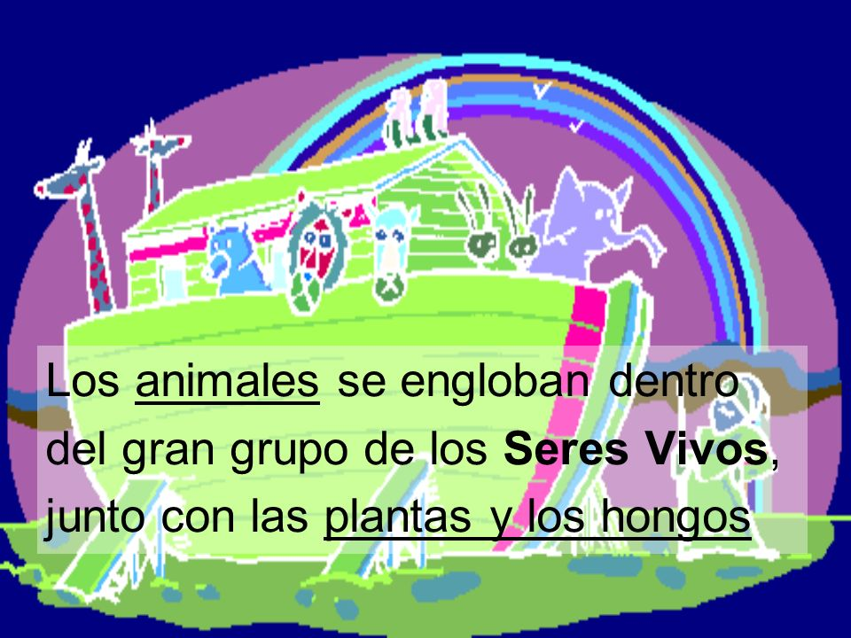 Los animales se engloban dentro