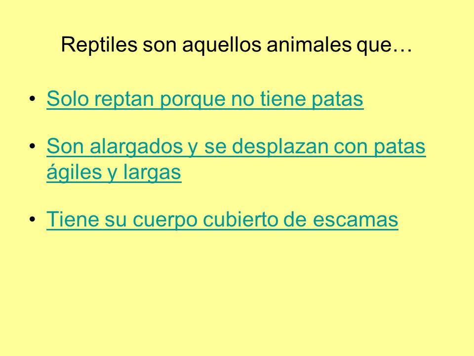 Reptiles son aquellos animales que…