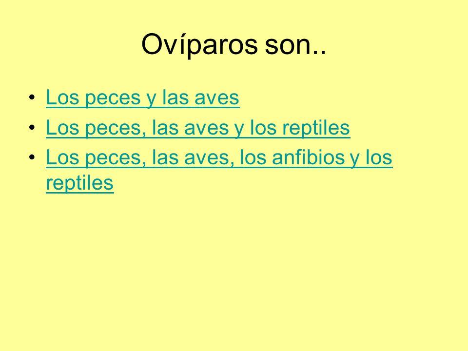 Ovíparos son.. Los peces y las aves Los peces, las aves y los reptiles