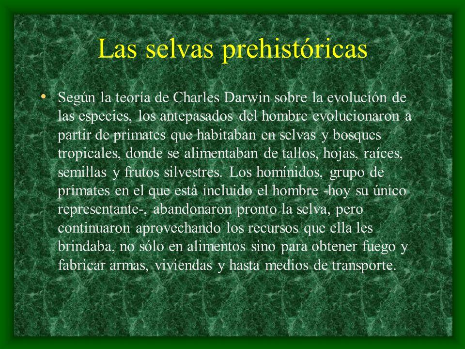 Las selvas prehistóricas