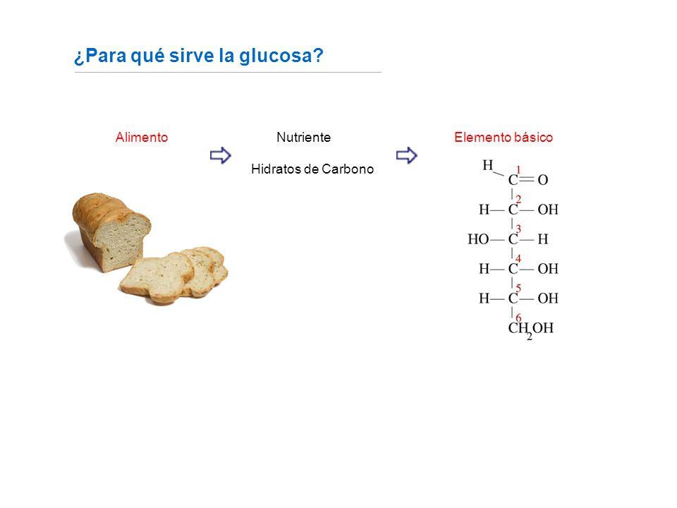 ¿Para qué sirve la glucosa