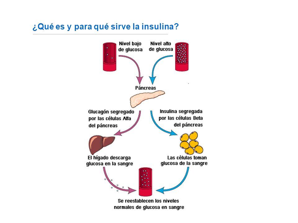 ¿Qué es y para qué sirve la insulina