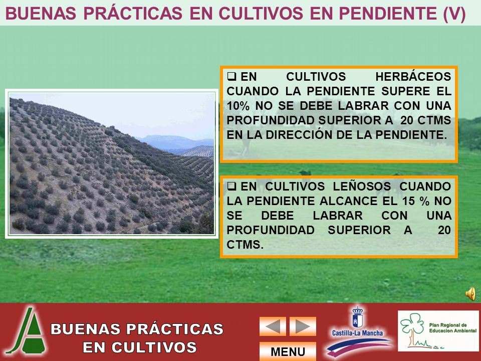 BUENAS PRÁCTICAS EN CULTIVOS EN PENDIENTE (V)