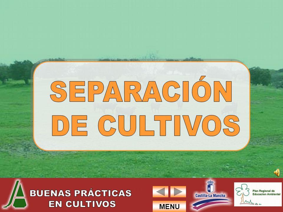 SEPARACIÓN DE CULTIVOS
