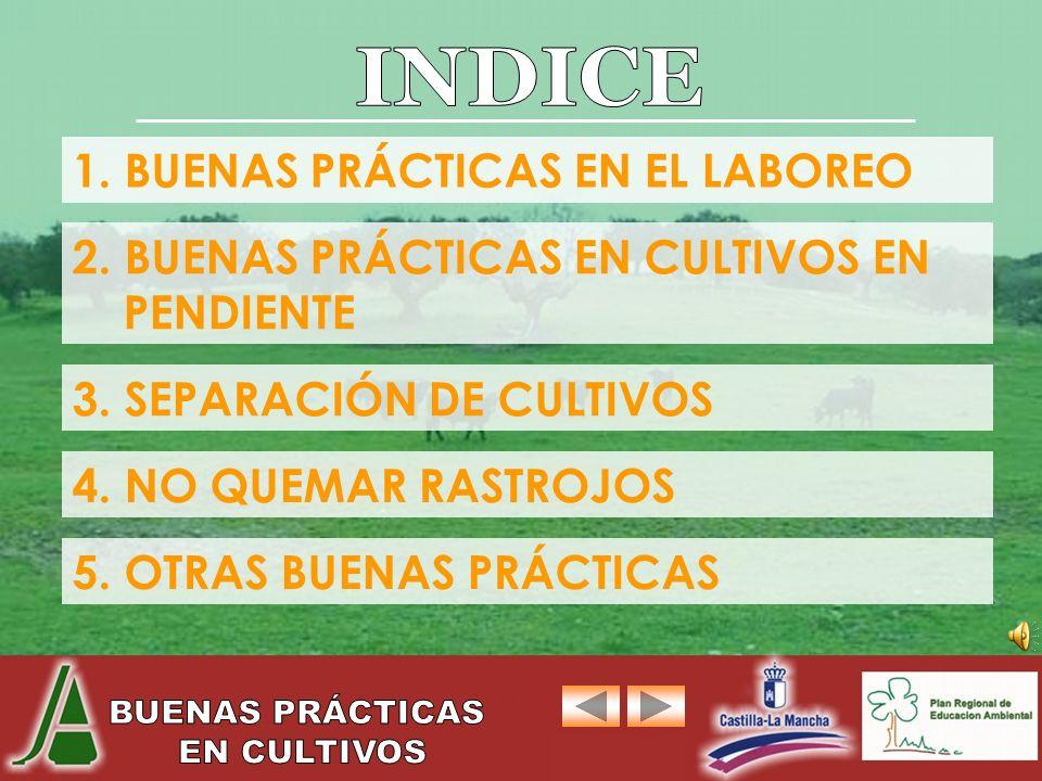 INDICE 1. BUENAS PRÁCTICAS EN EL LABOREO