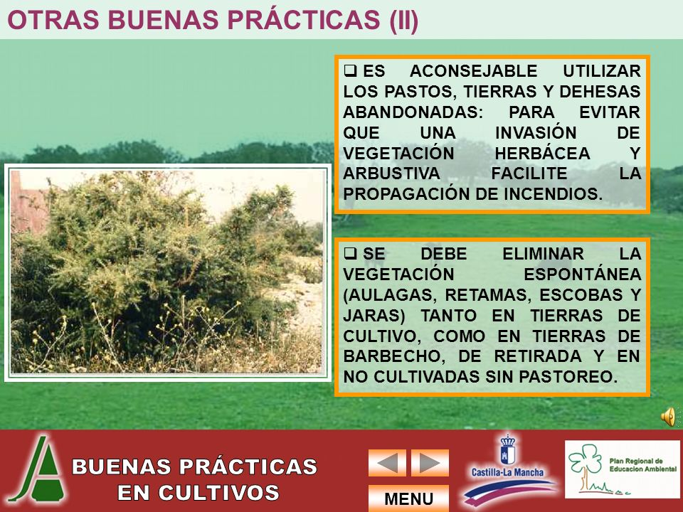 OTRAS BUENAS PRÁCTICAS (II)