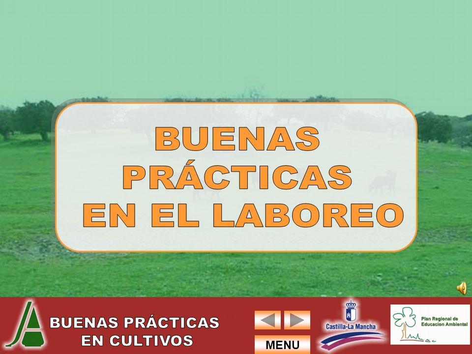BUENAS PRÁCTICAS EN EL LABOREO