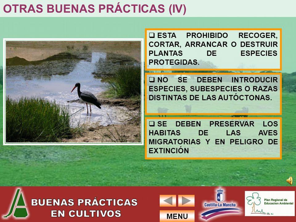 OTRAS BUENAS PRÁCTICAS (IV)