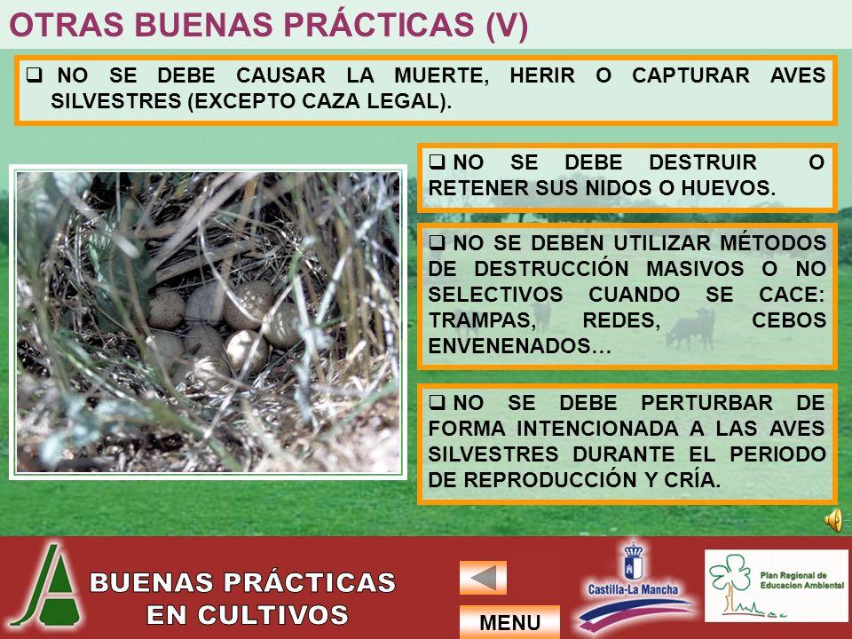 OTRAS BUENAS PRÁCTICAS (V)