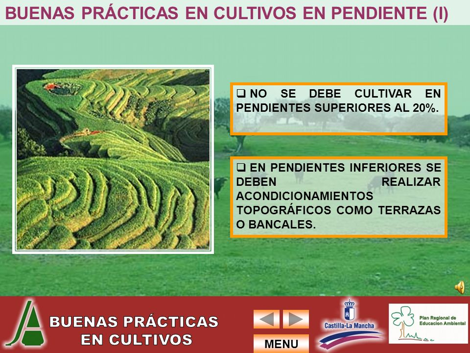 BUENAS PRÁCTICAS EN CULTIVOS EN PENDIENTE (I)