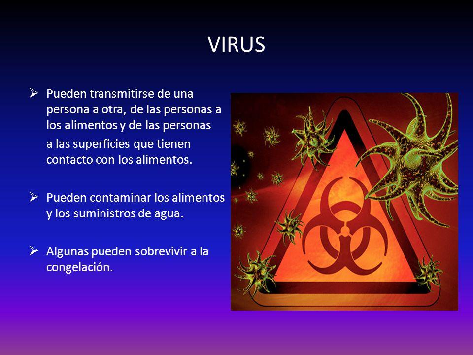 VIRUS Pueden transmitirse de una persona a otra, de las personas a los alimentos y de las personas.