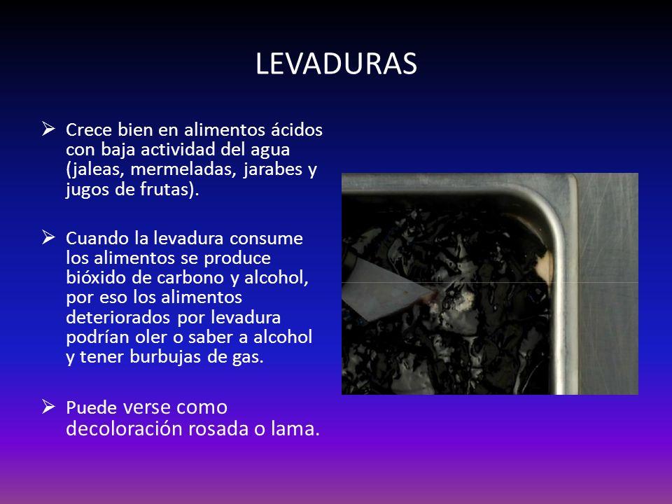 LEVADURAS Crece bien en alimentos ácidos con baja actividad del agua (jaleas, mermeladas, jarabes y jugos de frutas).