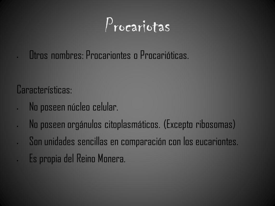Procariotas Otros nombres: Procariontes o Procarióticas.