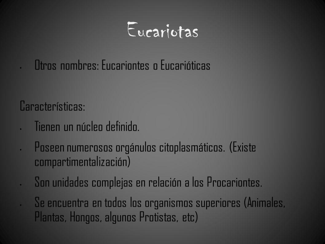 Eucariotas Otros nombres: Eucariontes o Eucarióticas Características: