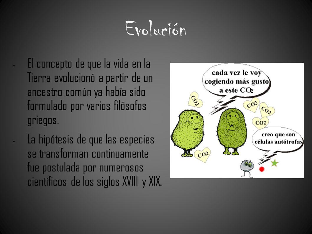 Evolución El concepto de que la vida en la Tierra evolucionó a partir de un ancestro común ya había sido formulado por varios filósofos griegos.