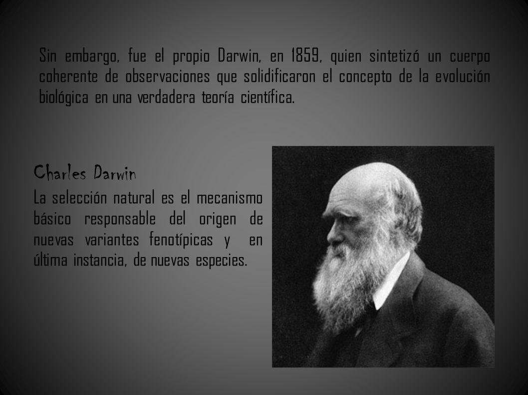Sin embargo, fue el propio Darwin, en 1859, quien sintetizó un cuerpo coherente de observaciones que solidificaron el concepto de la evolución biológica en una verdadera teoría científica.