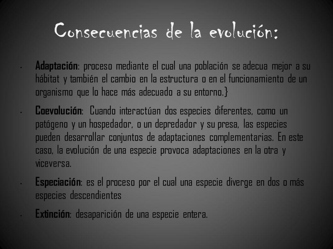Consecuencias de la evolución: