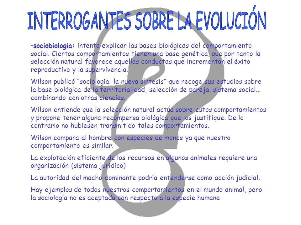 INTERROGANTES SOBRE LA EVOLUCIÓN
