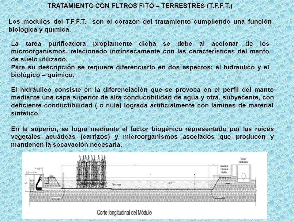 TRATAMIENTO CON FLTROS FITO – TERRESTRES (T.F.F.T.)