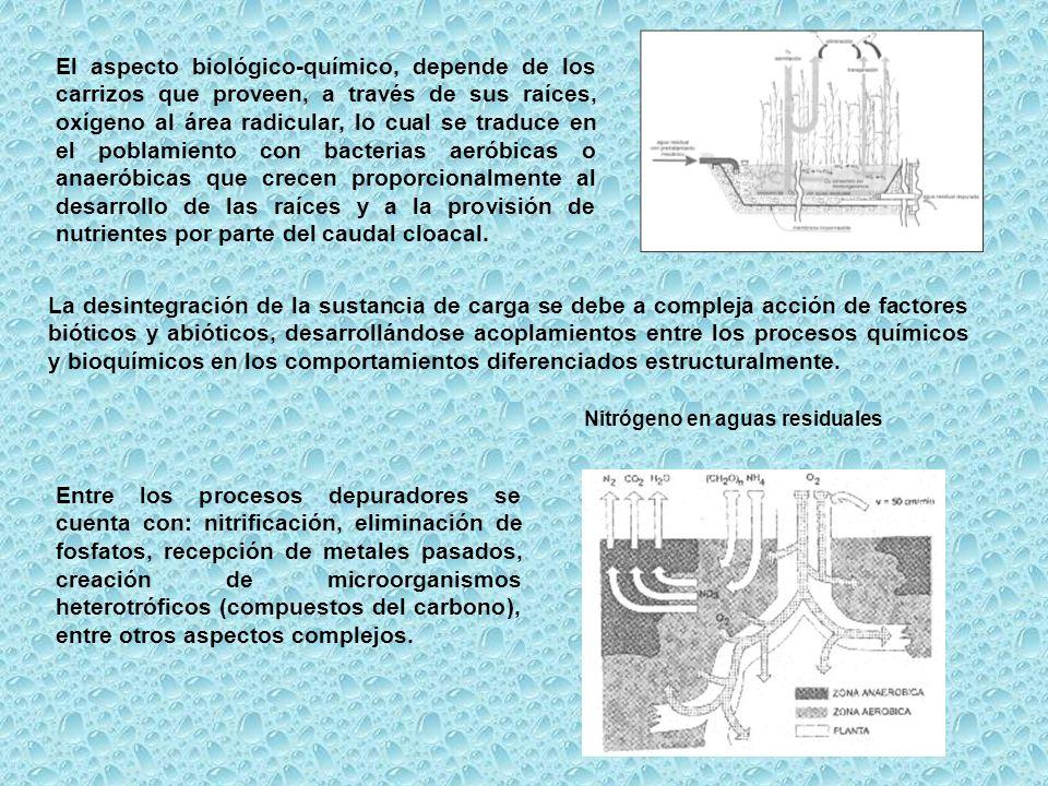 Nitrógeno en aguas residuales