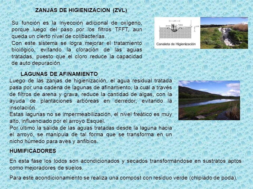 ZANJAS DE HIGIENIZACION (ZVL)