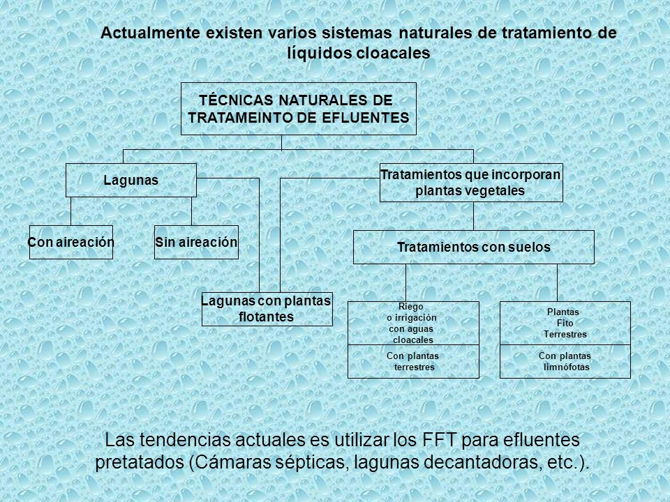 Actualmente existen varios sistemas naturales de tratamiento de líquidos cloacales