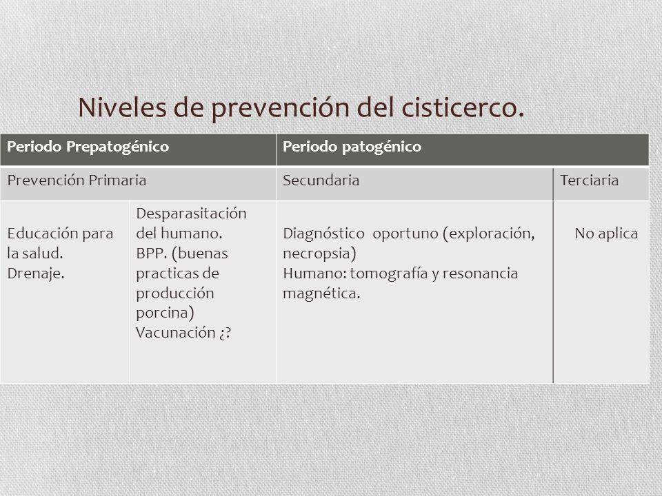 Niveles de prevención del cisticerco.