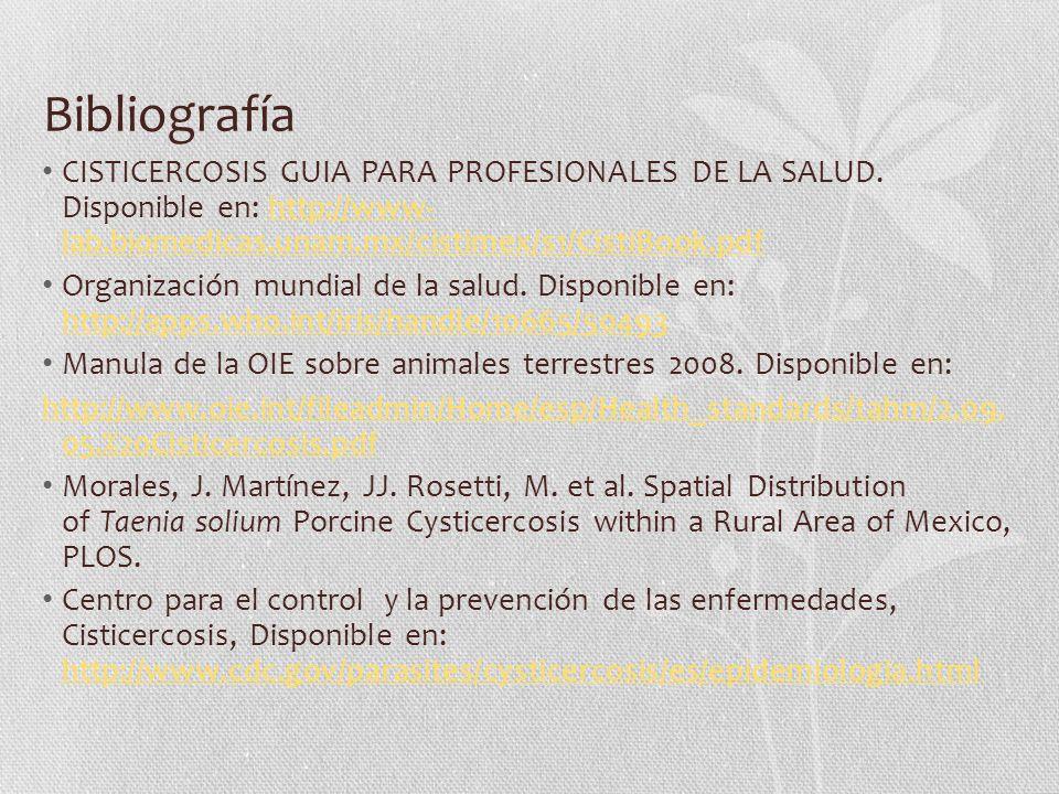 Bibliografía CISTICERCOSIS GUIA PARA PROFESIONALES DE LA SALUD. Disponible en: http://www- lab.biomedicas.unam.mx/cistimex/s1/CistiBook.pdf.