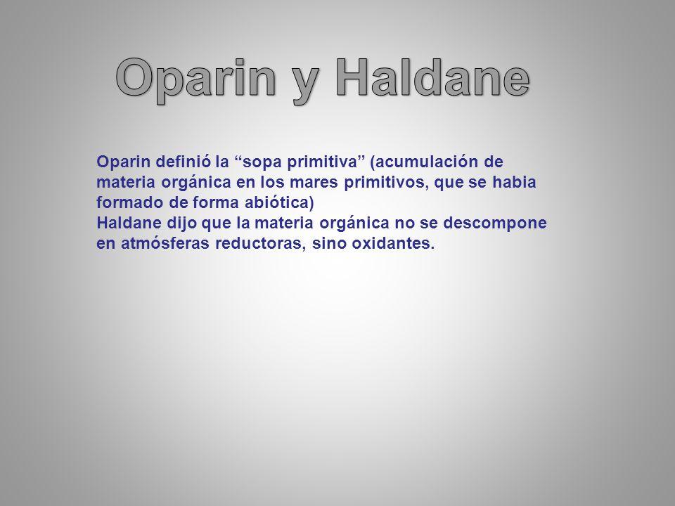 Oparin y Haldane Oparin definió la sopa primitiva (acumulación de materia orgánica en los mares primitivos, que se habia formado de forma abiótica)