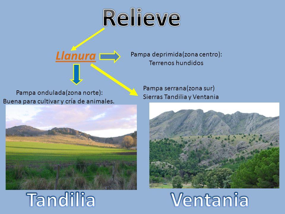 Relieve Tandilia Ventania Llanura Pampa deprimida(zona centro):
