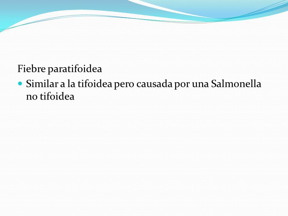 Fiebre paratifoidea Similar a la tifoidea pero causada por una Salmonella no tifoidea
