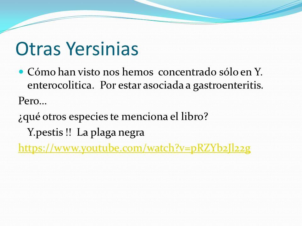 Otras Yersinias Cómo han visto nos hemos concentrado sólo en Y. enterocolitica. Por estar asociada a gastroenteritis.