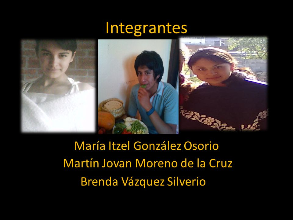 Integrantes María Itzel González Osorio Martín Jovan Moreno de la Cruz