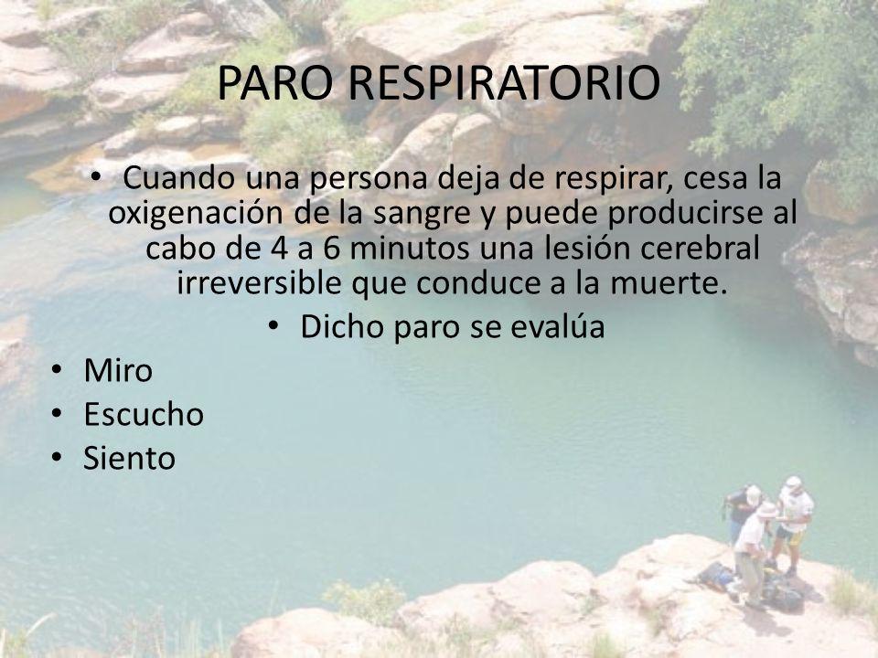PARO RESPIRATORIO