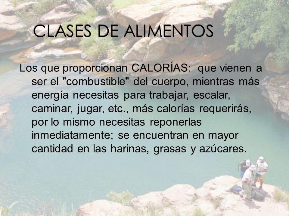 CLASES DE ALIMENTOS