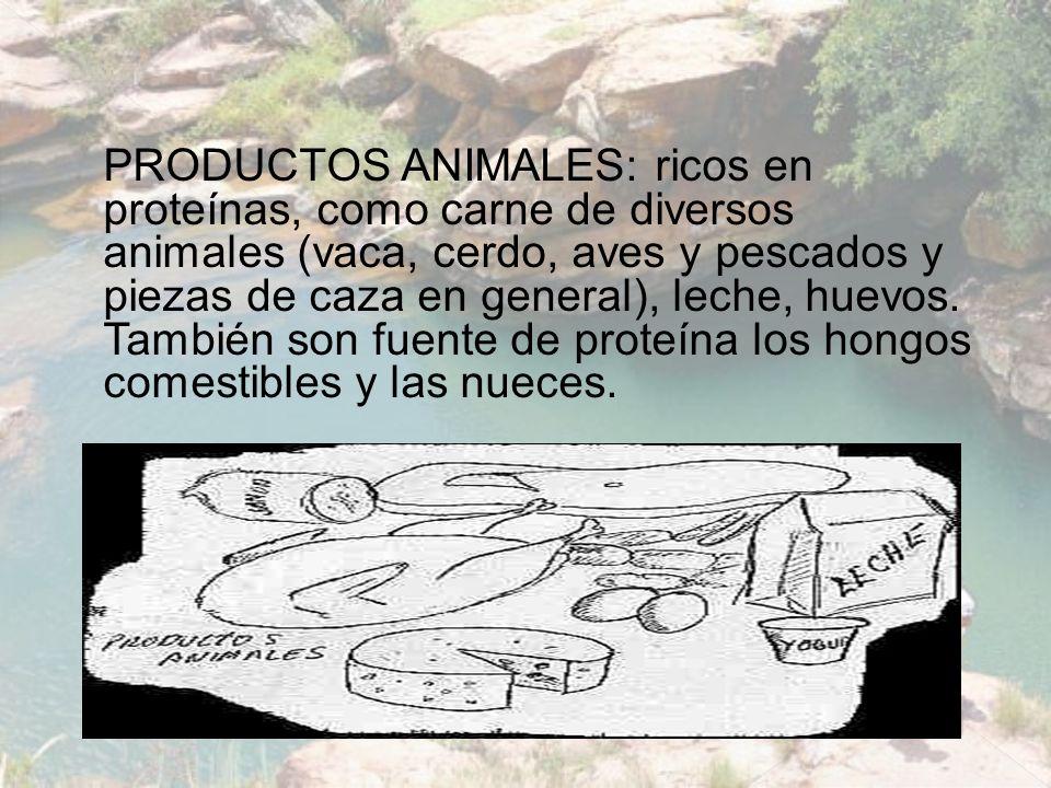 PRODUCTOS ANIMALES: ricos en proteínas, como carne de diversos animales (vaca, cerdo, aves y pescados y piezas de caza en general), leche, huevos.