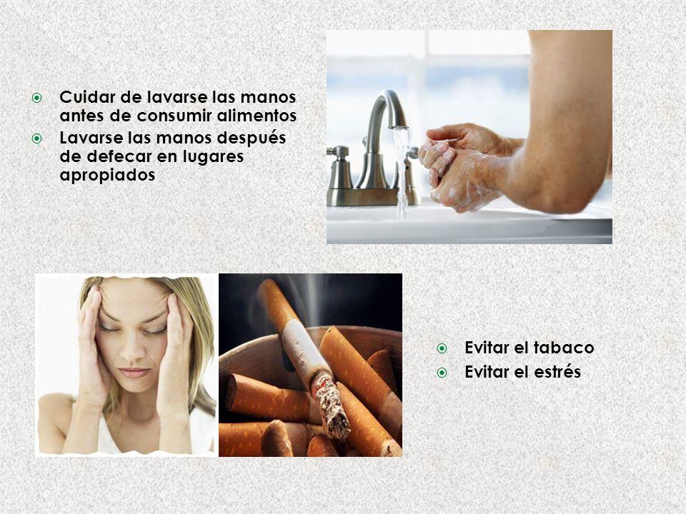 Cuidar de lavarse las manos antes de consumir alimentos