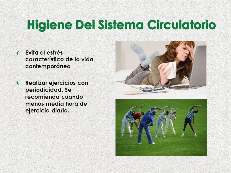 Higiene Del Sistema Circulatorio