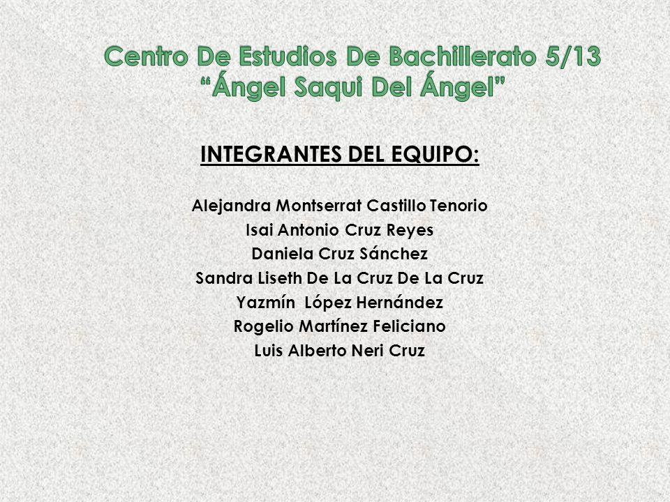 Centro De Estudios De Bachillerato 5/13 Ángel Saqui Del Ángel
