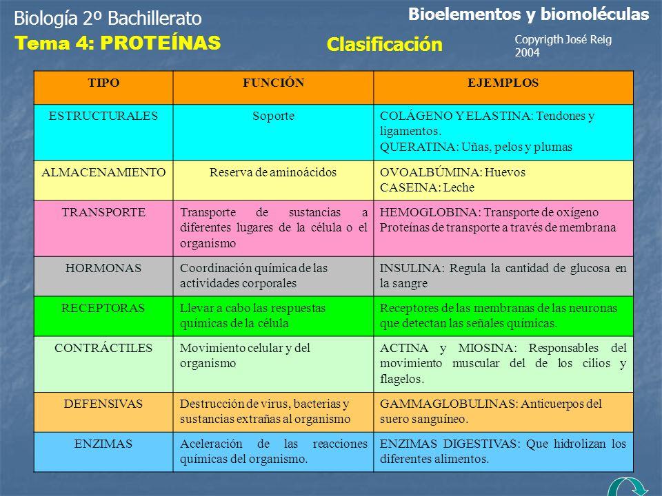 Reserva de aminoácidos