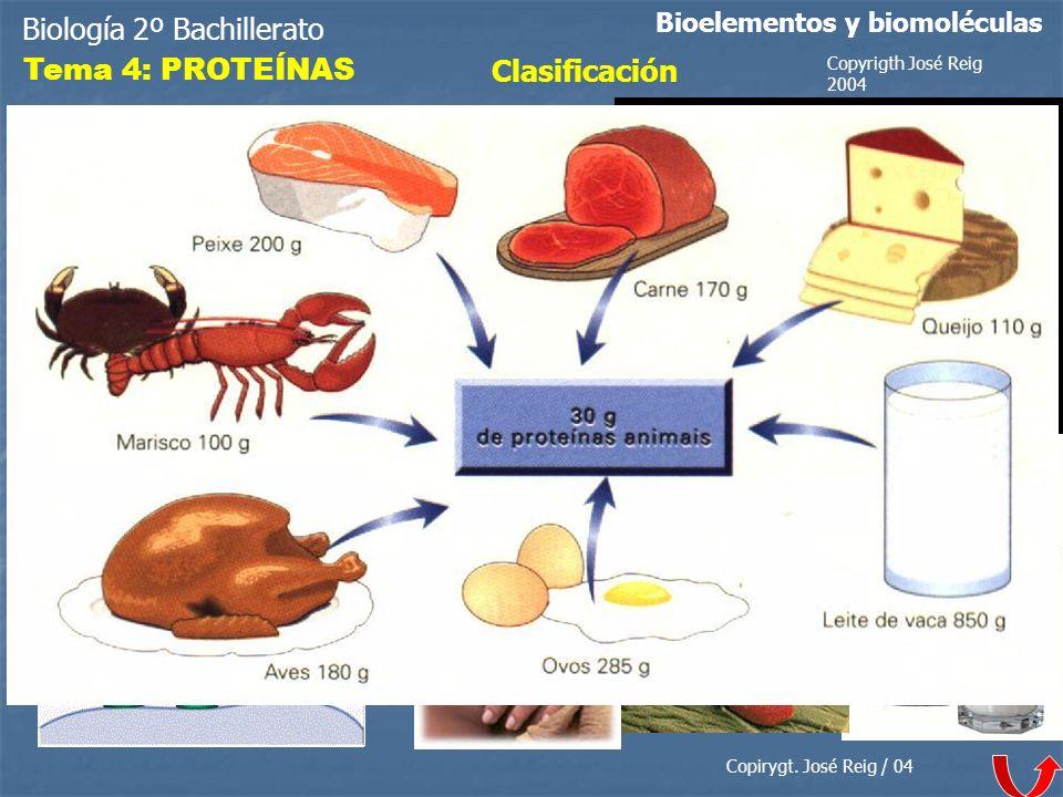 Biología 2º Bachillerato Tema 4: PROTEÍNAS Clasificación