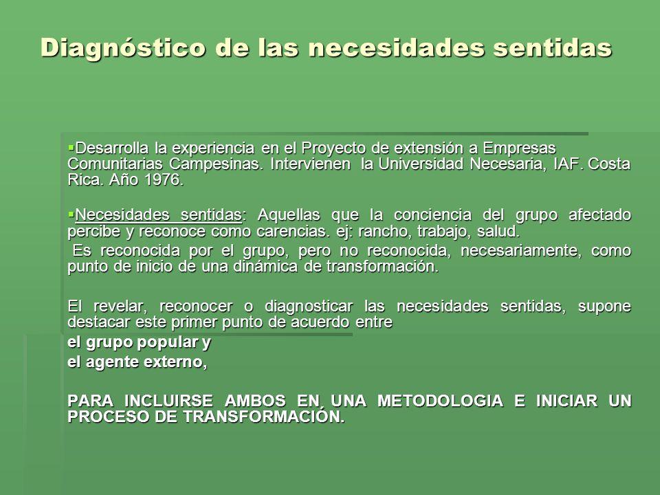 Diagnóstico de las necesidades sentidas