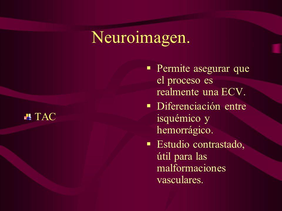 Neuroimagen. Permite asegurar que el proceso es realmente una ECV.