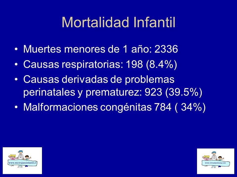 Mortalidad Infantil Muertes menores de 1 año: 2336