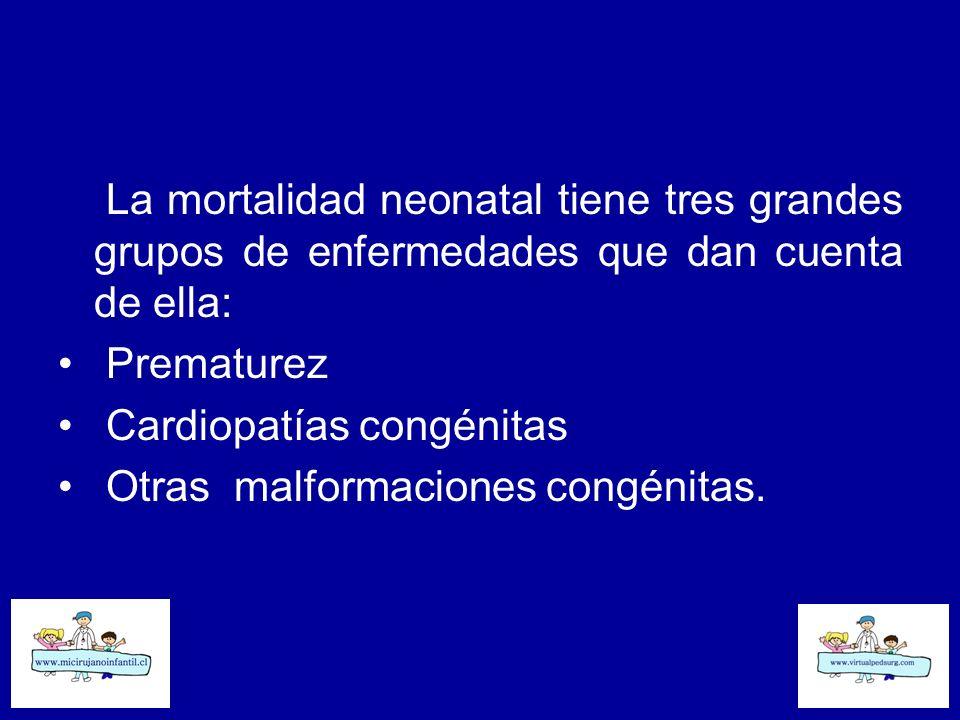 La mortalidad neonatal tiene tres grandes grupos de enfermedades que dan cuenta de ella: