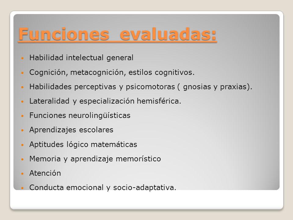 Funciones evaluadas: Habilidad intelectual general