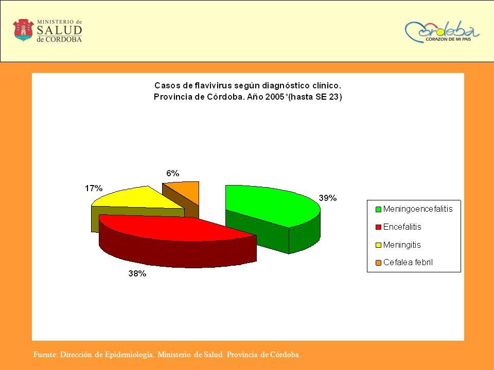 Fuente: Dirección de Epidemiología. Ministerio de Salud