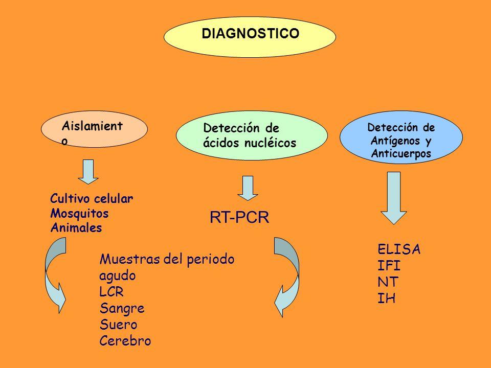 Detección de Antígenos y Anticuerpos